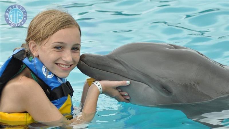 Swim with Dolphins in Evrenseki Turkey