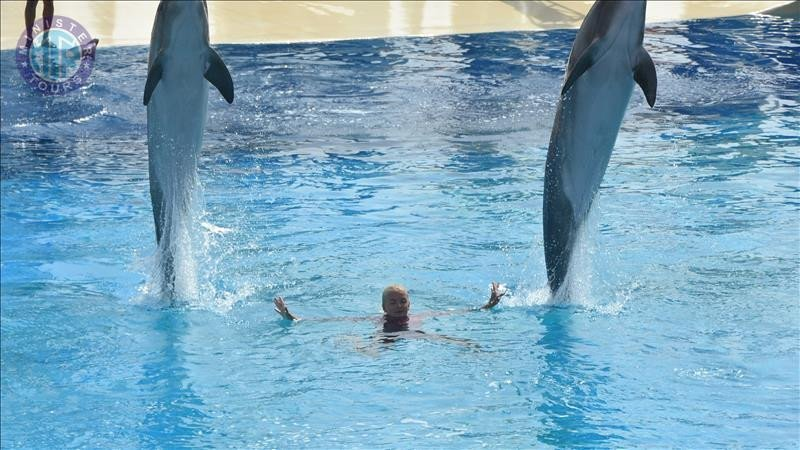 Alanya dolphin show from Colakli