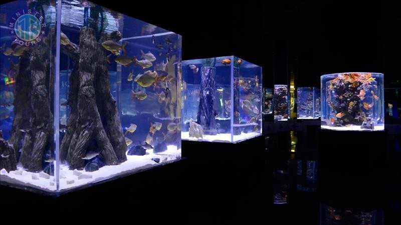 Antalya aquarium from Belek