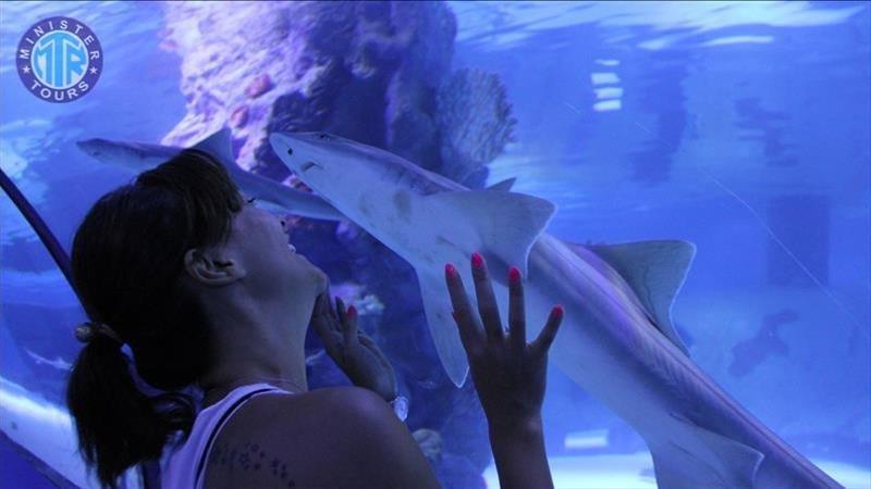 Oceanarium from Kemer (Aquarium)