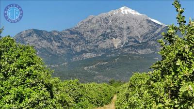 Antalya Tahtalı Dağı Teleferik