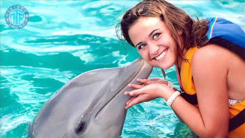 Swim With Dolphins Marmaris