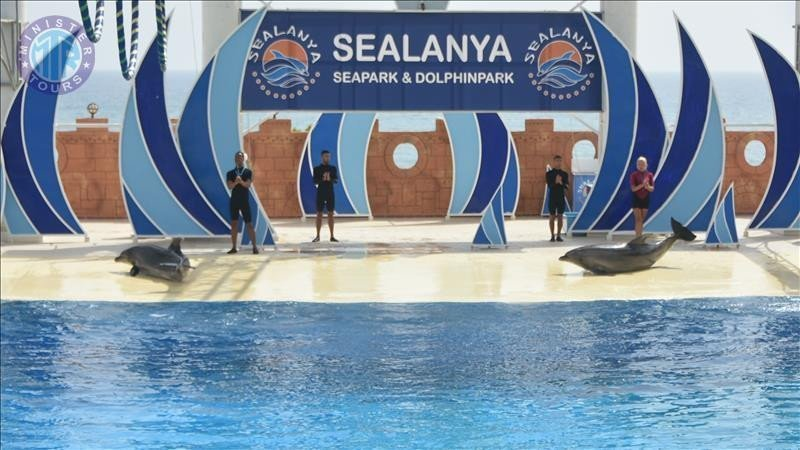 Alanya diphin park besøg