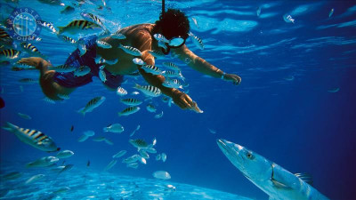 Fishing and snorkeling in Turkler