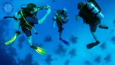 Diving Tour in Turkler