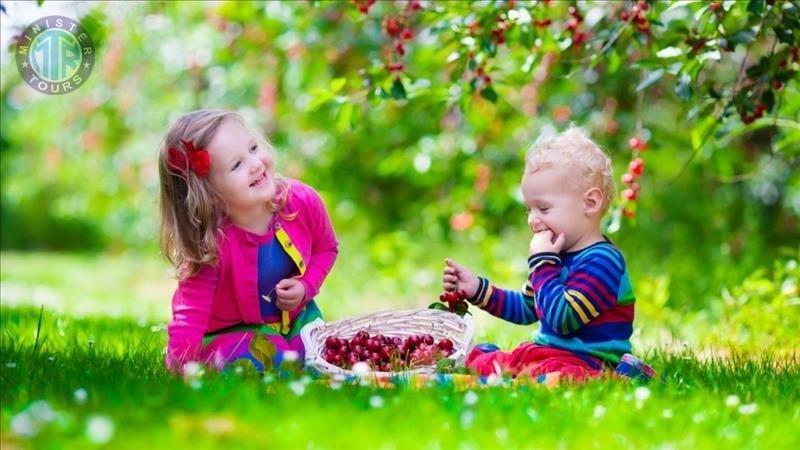 تور تفریحی با کودکان در محمودلار ۴در۱
